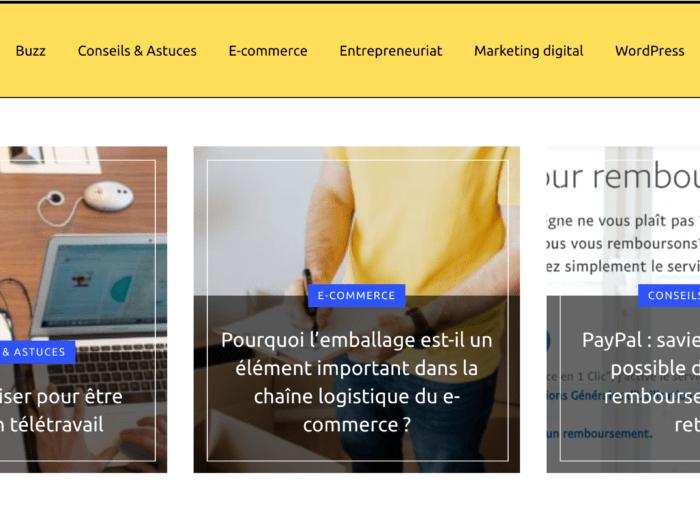 le blog webizi.fr